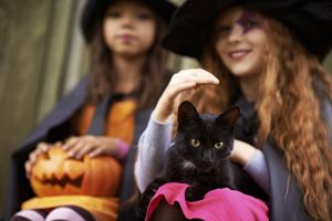 Children in stage costumes of wizards with cat at Halloween