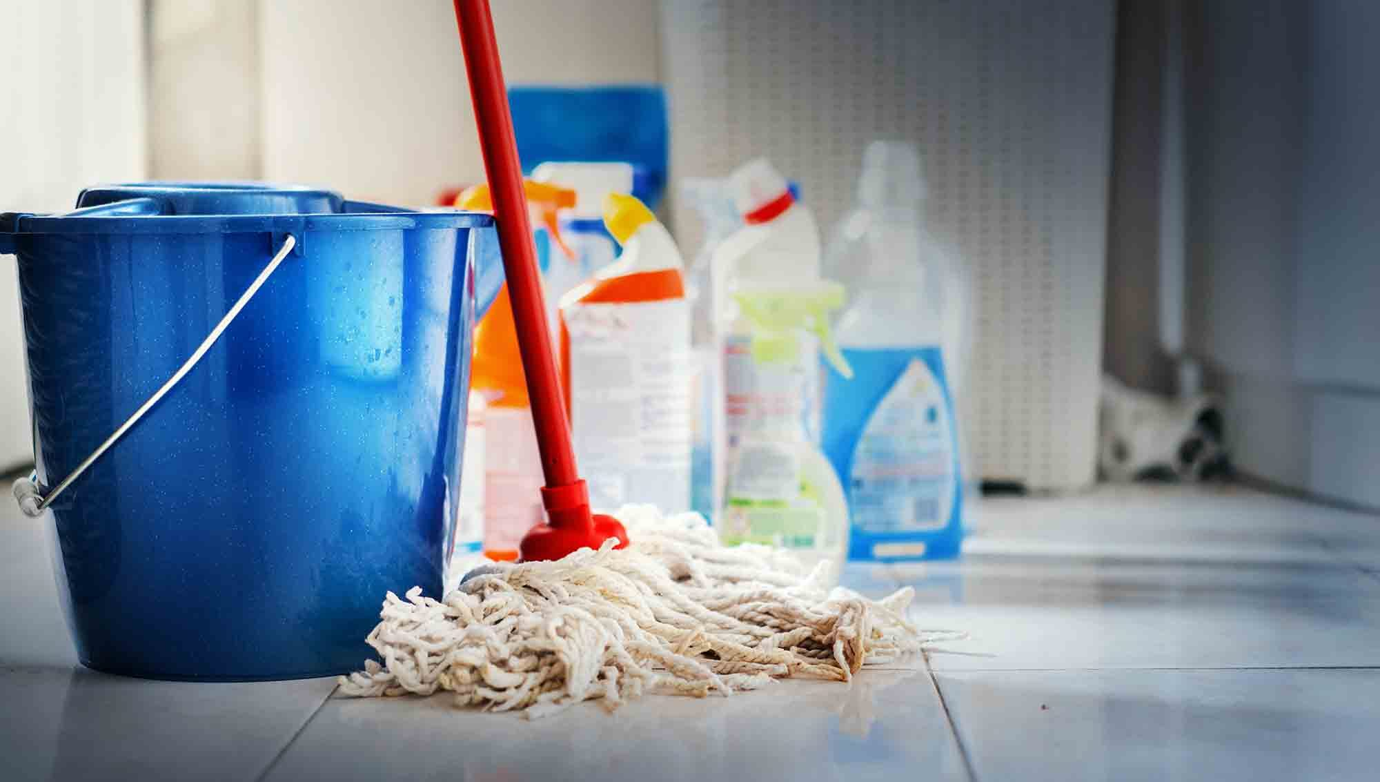 pet poisoning in your home