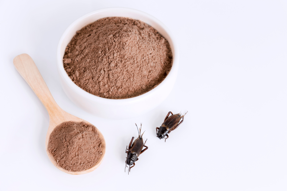 pet food from crickets
